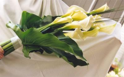Kvety - Obrázok č. 3
