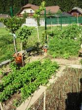 bojová záhradka