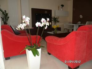 a moje oblubene orchidee