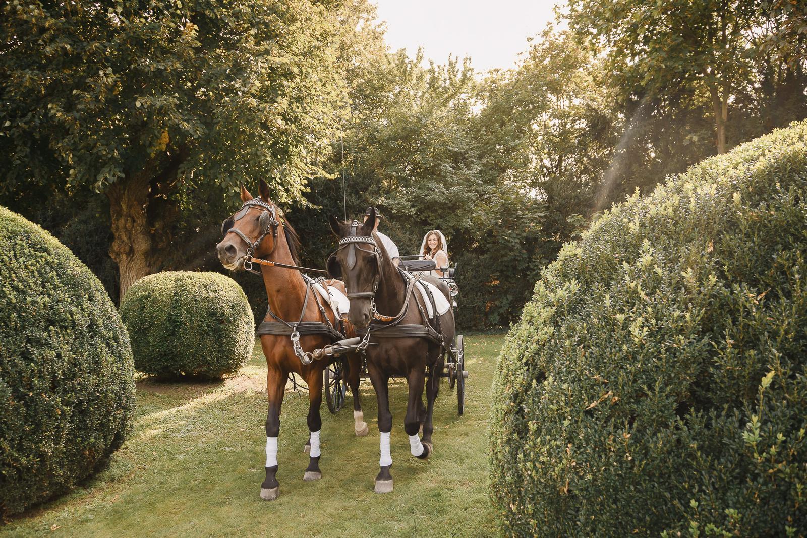 Ekaterina & Thomas - Wedding in Austria ❤️ - Obrázok č. 38