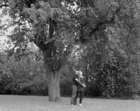 """2.výročie pod našim """"svadobným"""" stromom-už aj s Ninkou v brušku  :)"""