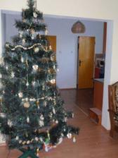 Náš vianočný stromček a vchod do kuchyne...