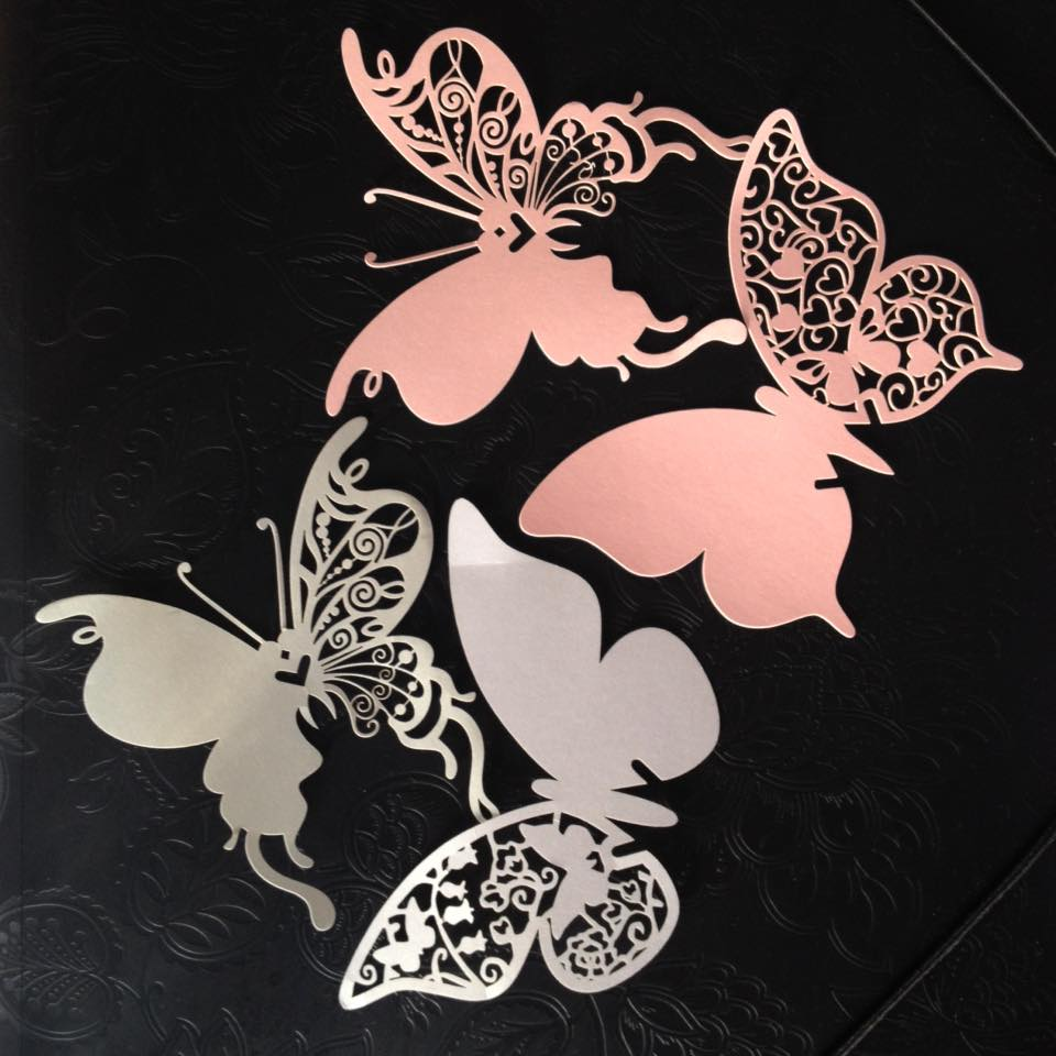 Jmenovky motýl - Obrázek č. 1