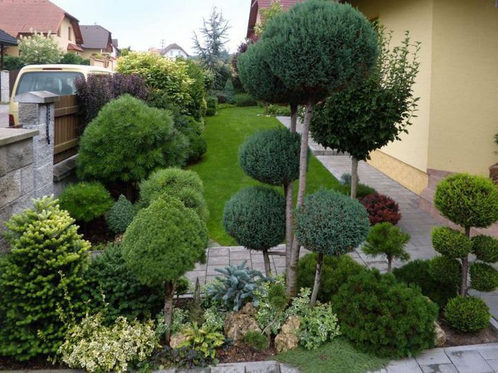 Zahrada - inšpirácie - Obrázok č. 134