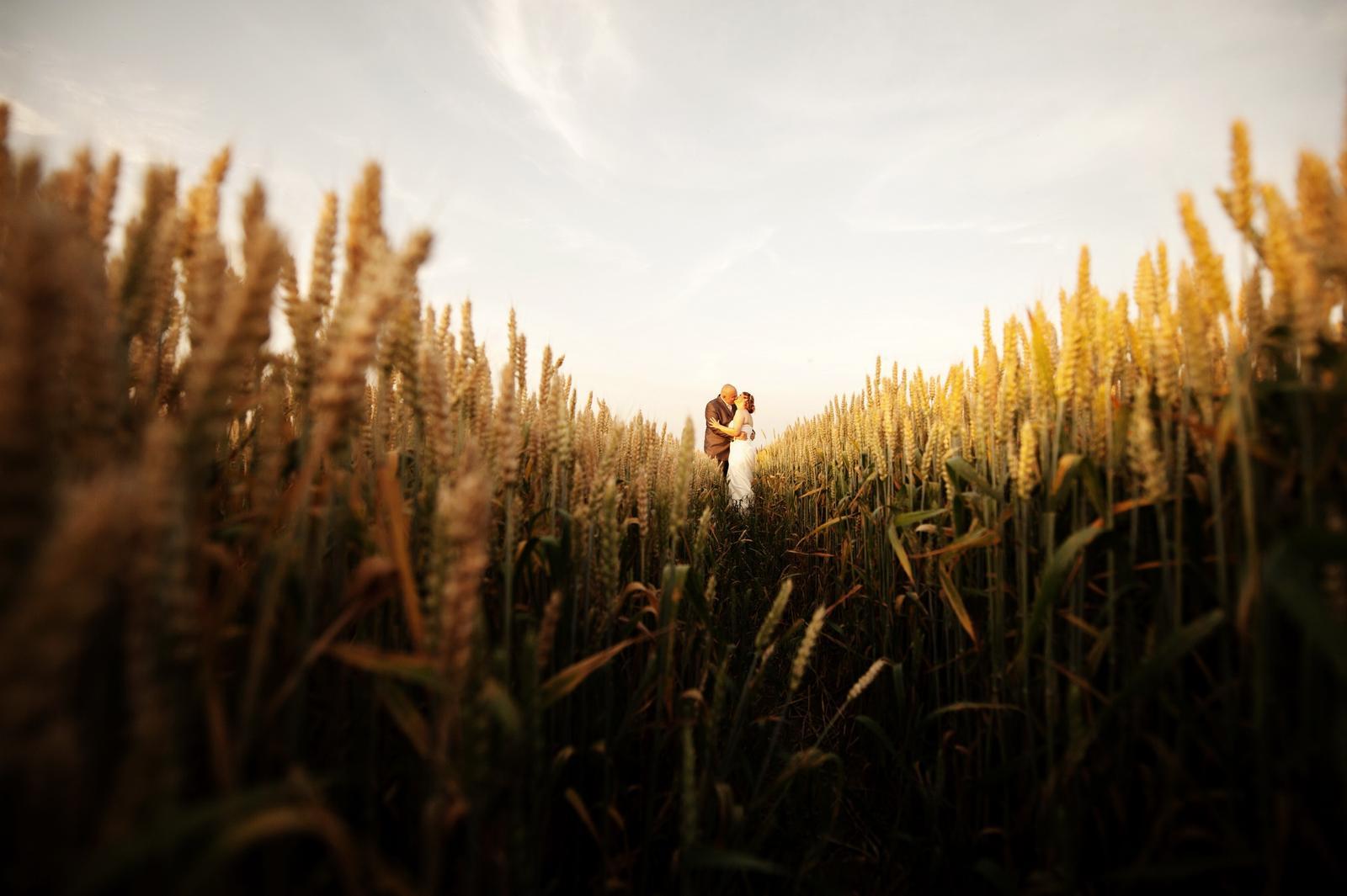 @lucikvesela Pred výberom fotografa... - Obrázok č. 1