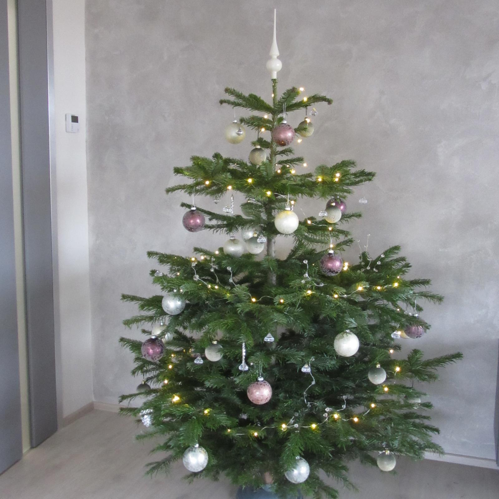 Sen se naplnil - krásné vánoční svátky všem