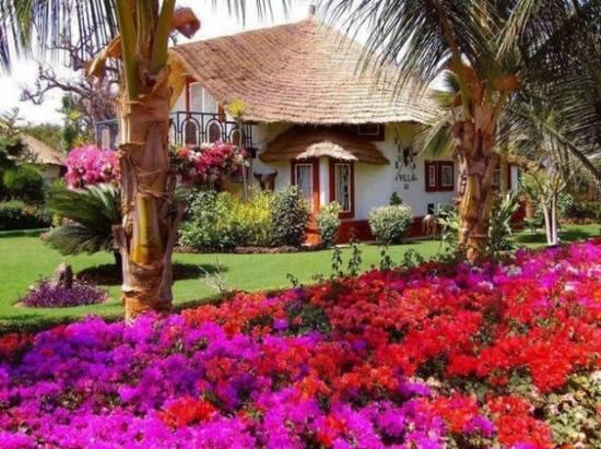 Inšpirácie, ktoré ma zaujali :) - takú záhradku by som brala :)