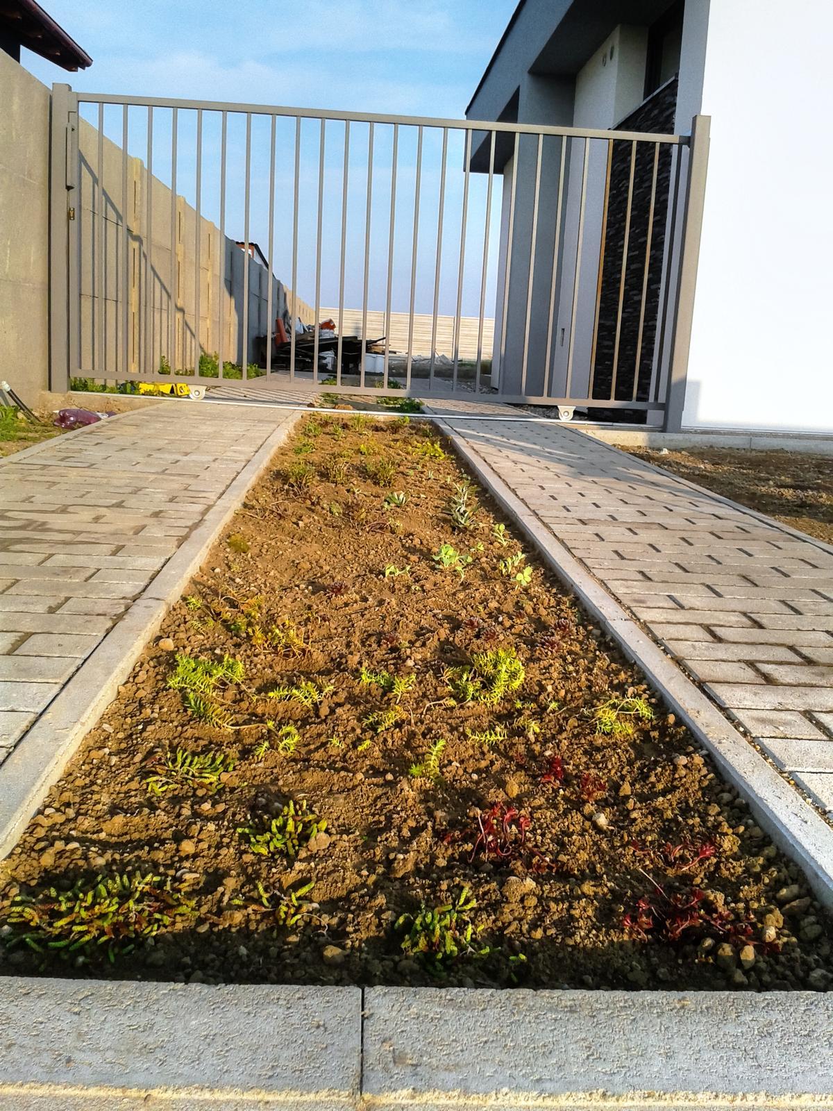 Modern Garden Linear324 - naša prímorská - konecne sa nam nieco zazelena... asi 30druhov skalniciek :)) v prijazdovej ceste