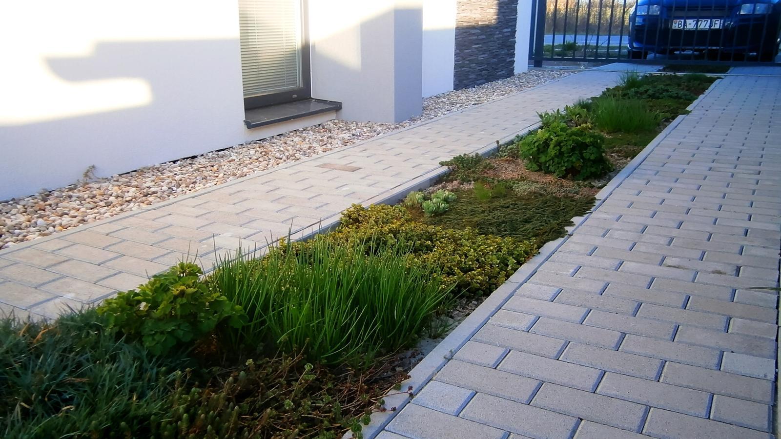 Modern Garden Linear324 - naša prímorská - Obrázok č. 33