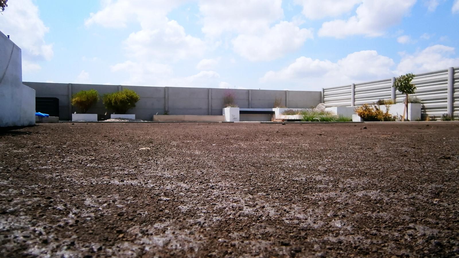 Modern Garden Linear324 - naša prímorská - Zrovnane... konecne to lepsie vyzera