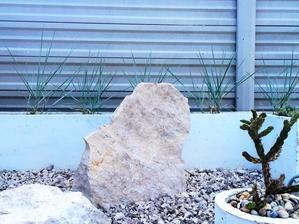 nasiel som ju :)) okrasna trava ktora rastie do modro-siva... vyska cca 50-60cm, vysadime cely zadny kochlik... opat nieco primorske aspon vizualom k nam pribudne :) LEYMUS ARENARIUS BLUE DANCE