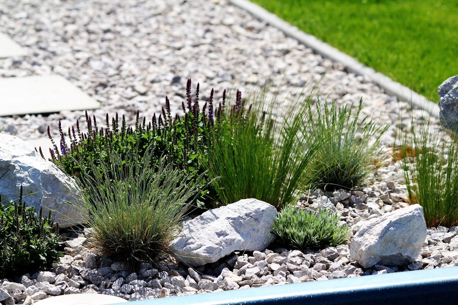 Modern Garden Linear324 - naša prímorská - Obrázok č. 134