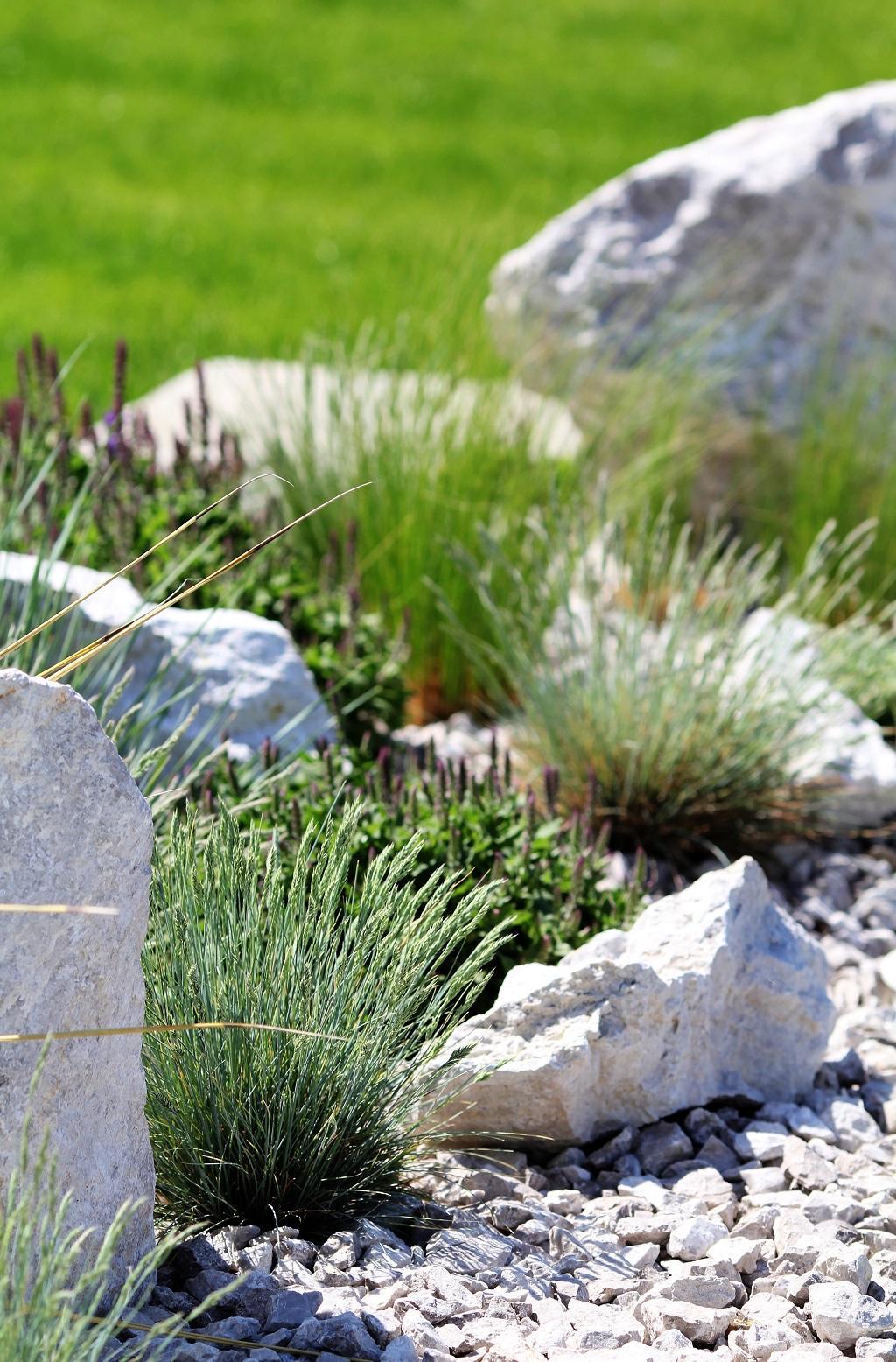 Modern Garden Linear324 - naša prímorská - Obrázok č. 135