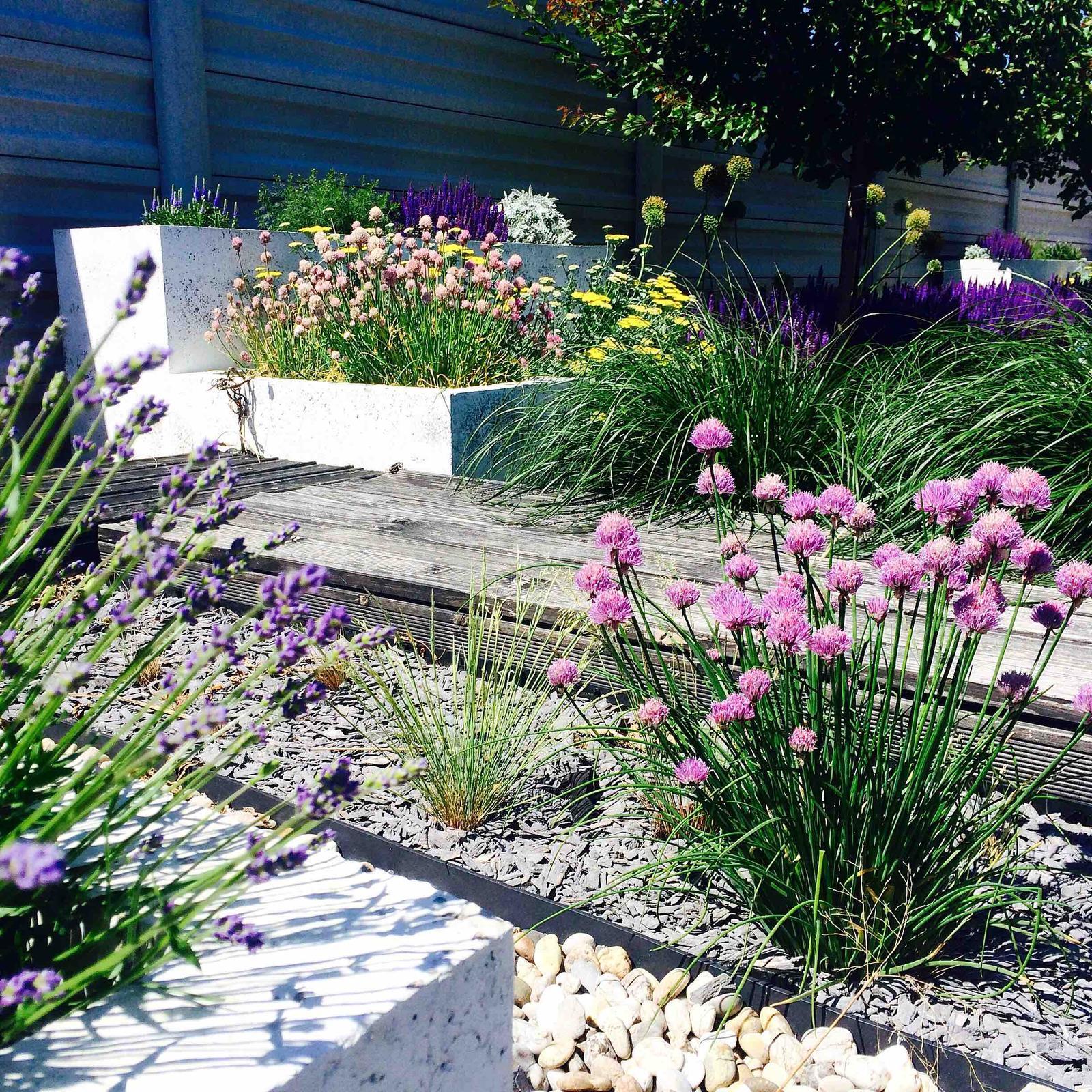 Modern Garden Linear324 - naša prímorská - jedna instagramova :)