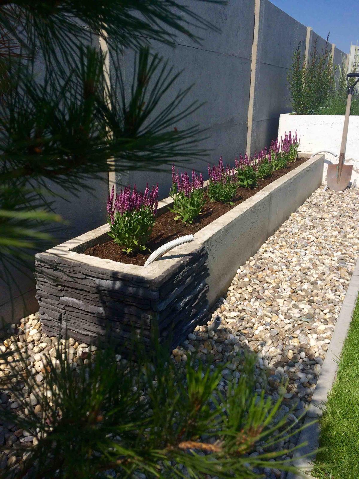 Modern Garden Linear324 - naša prímorská - pokracovanie nabuduce :D, ostalo lepidlo tak ho vyuzijem :D
