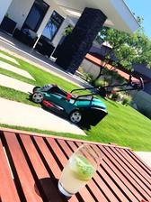 Nedela, co si zacnes... orezany chodnik od travy, masina nastartovana a NEalko(bohuzial :D) Mojito mi robi spolocnost :D