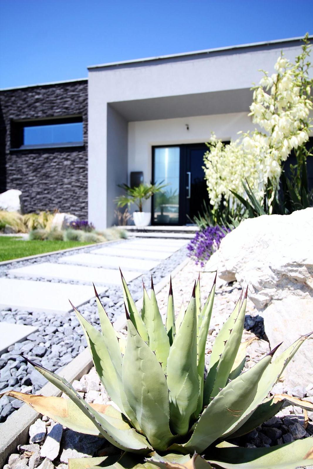 Modern Garden Linear324 - naša prímorská - v pozadi juky v plnom kvete :)
