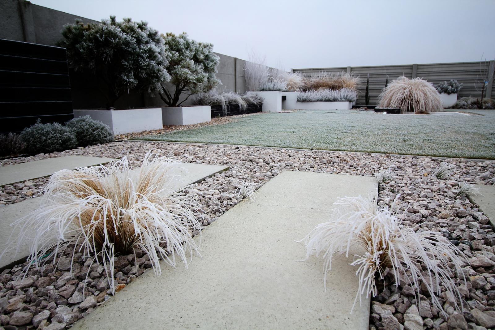 Modern Garden Linear324 - naša prímorská - Keď maluje pani zima :)