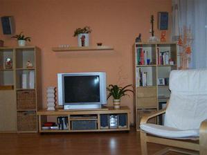 Stěna v obýváku.