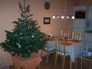 Letošní vánoční stromeček a konečně jsem se dočkala i světla nad jídelním stolem:-)
