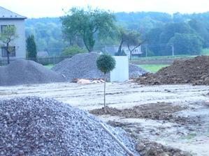 manžel zasadil strom a říkal, že má splněno. Zasadil strom, postavil dům a splodil syna a dceru.