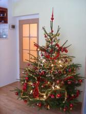Náš první vánoční stromeček:-)