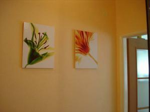 Nové obrázky na chodbě
