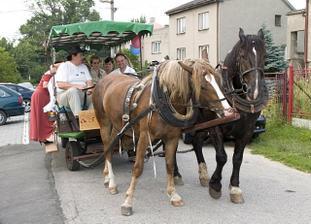 měli jsme projížďku s koníčkama :)