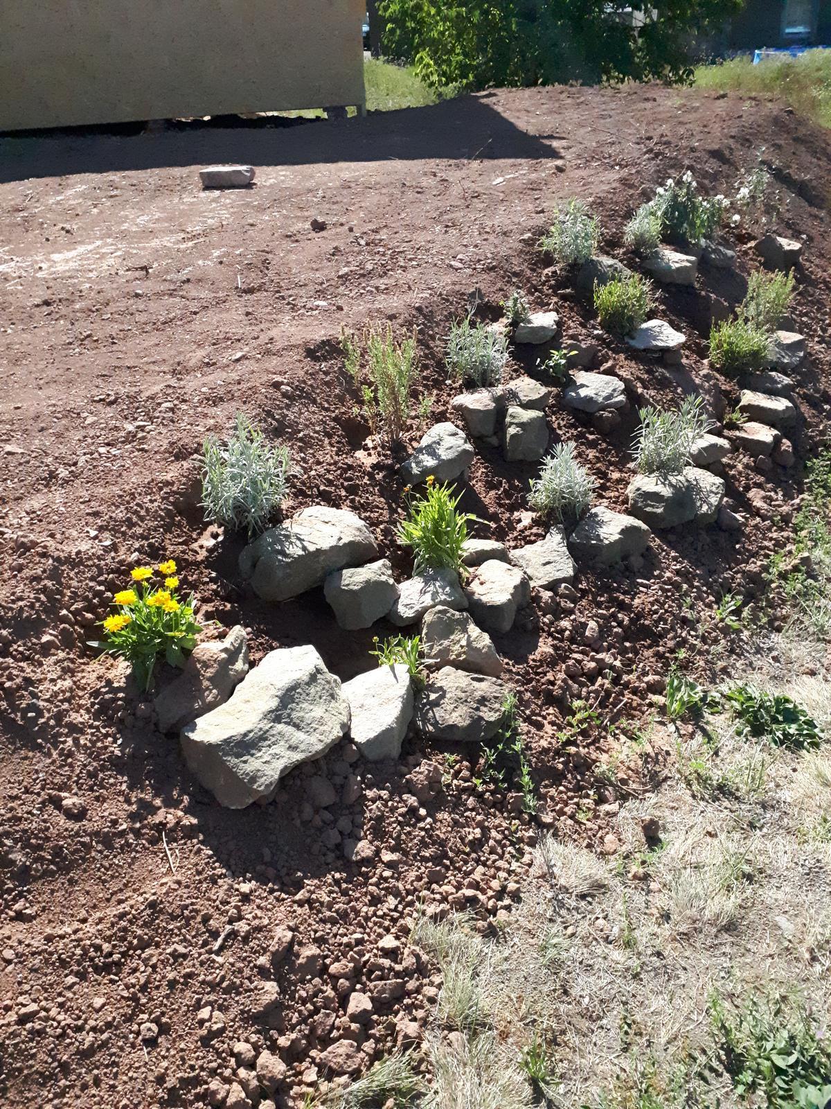 Venku (tam kde už to nevypadá jako staveniště) - Postupně zkulturňuji další kus zahrady, přidávám kameny a brzy nahoru vyseji trávník
