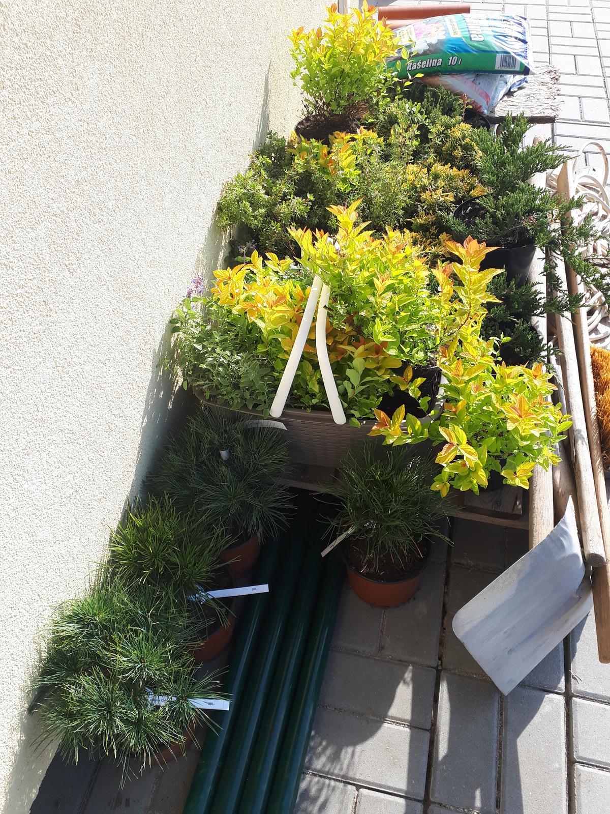 Venku (tam kde už to nevypadá jako staveniště) - Někomu udělá radost koupit si boty či kabelku za 2700 Kč, já to raději utratím v zahradnictví za 27 ks rostlinek :) aneb potřebuji zkulturnit další část zahrady
