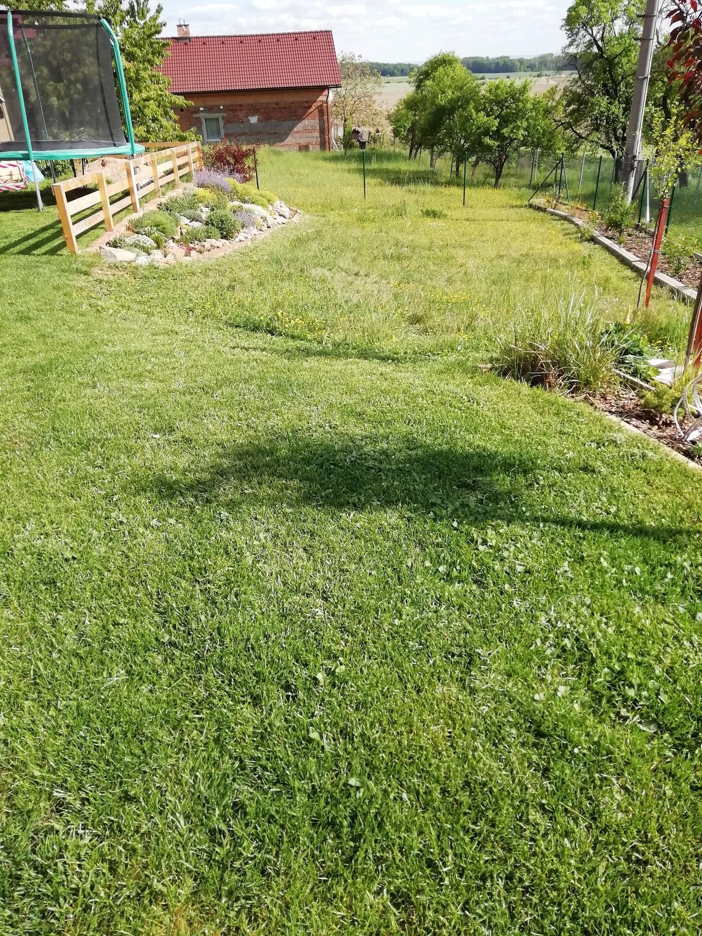 Venku (tam kde už to nevypadá jako staveniště) - Louka kvete, trávník se zelená :)
