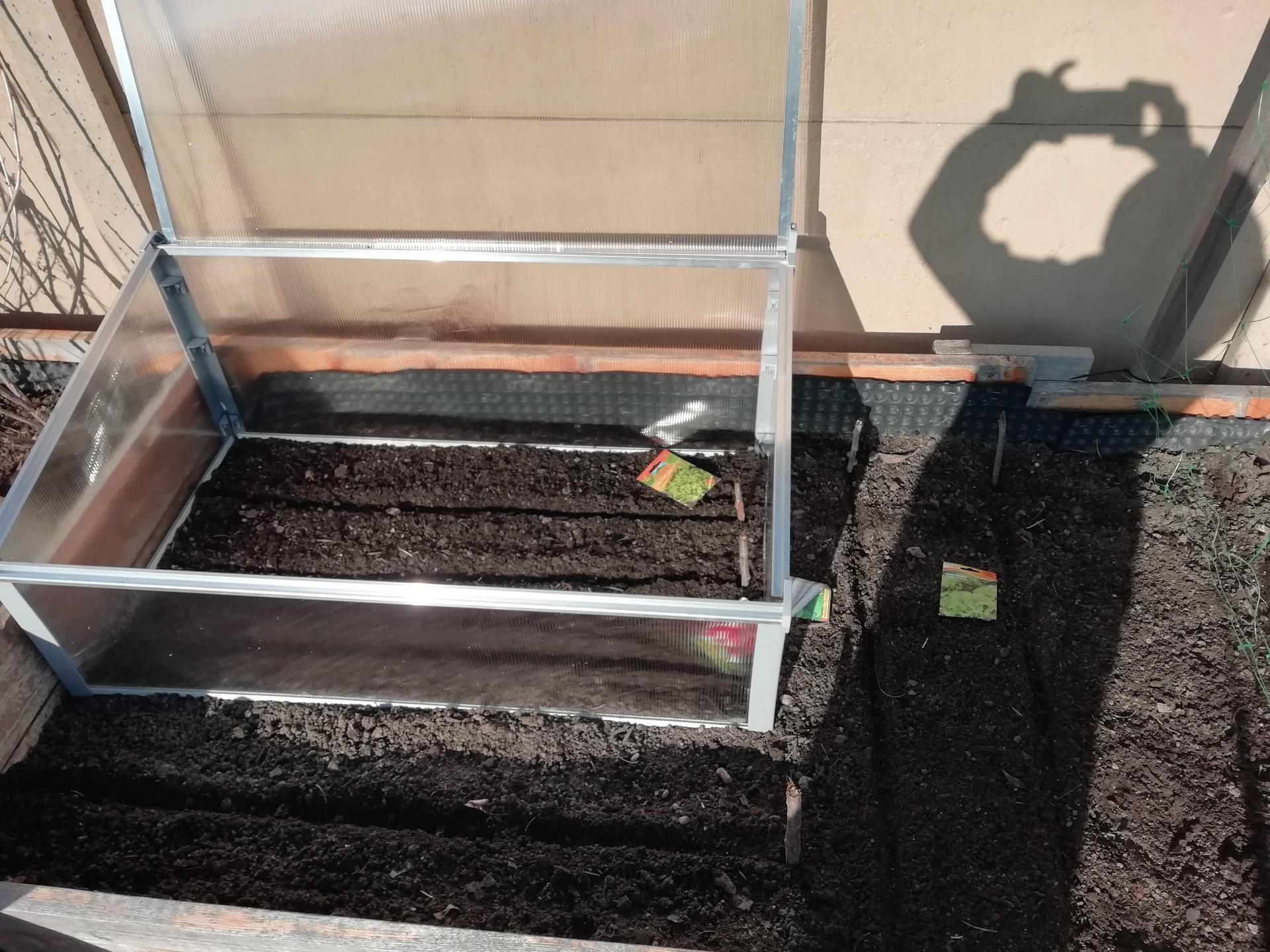 Venku (tam kde už to nevypadá jako staveniště) - zaseto- dovnitř-ředkvičky, salát, petržel, majoránka  a vedle-ředkvičky, salát, hrách, špenát