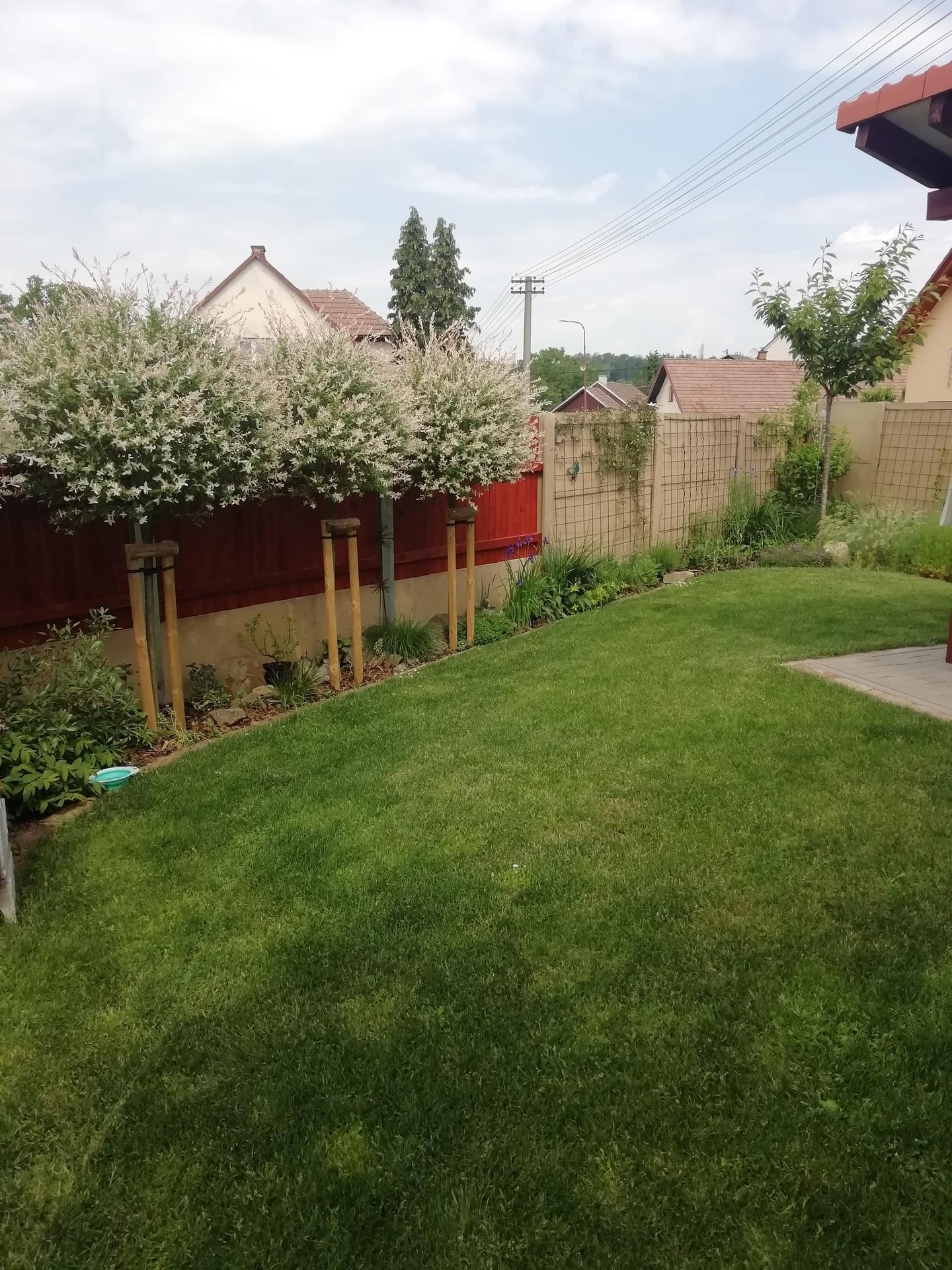 2021 Doma i venku - Obrázek č. 46
