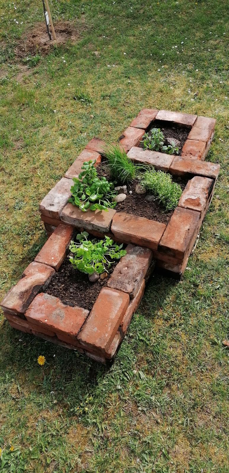 """Naše malé """"pole neorané"""" :o) záhradka 2. rok - ... bylinkový záhon zo starých tehál ..."""