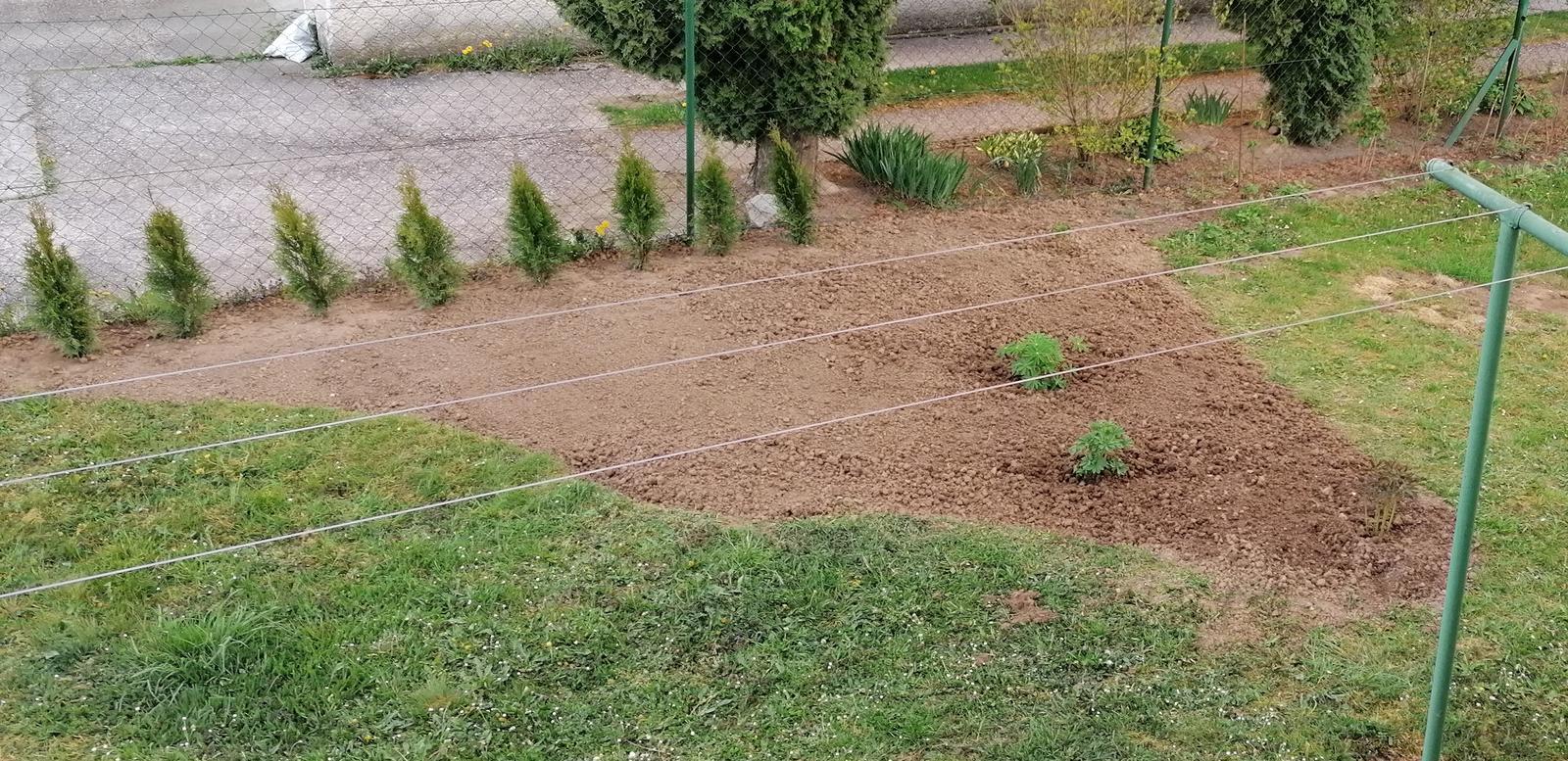"""Naše malé """"pole neorané"""" :o) záhradka 2. rok - ... skoro hotovo :-D ..."""
