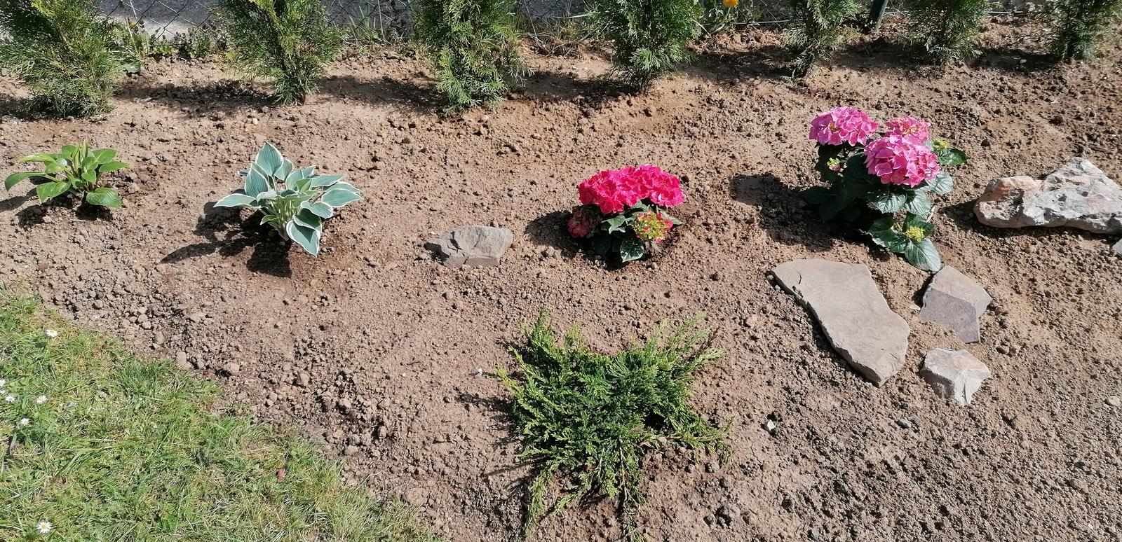 """Naše malé """"pole neorané"""" :o) záhradka 2. rok - Obrázok č. 13"""