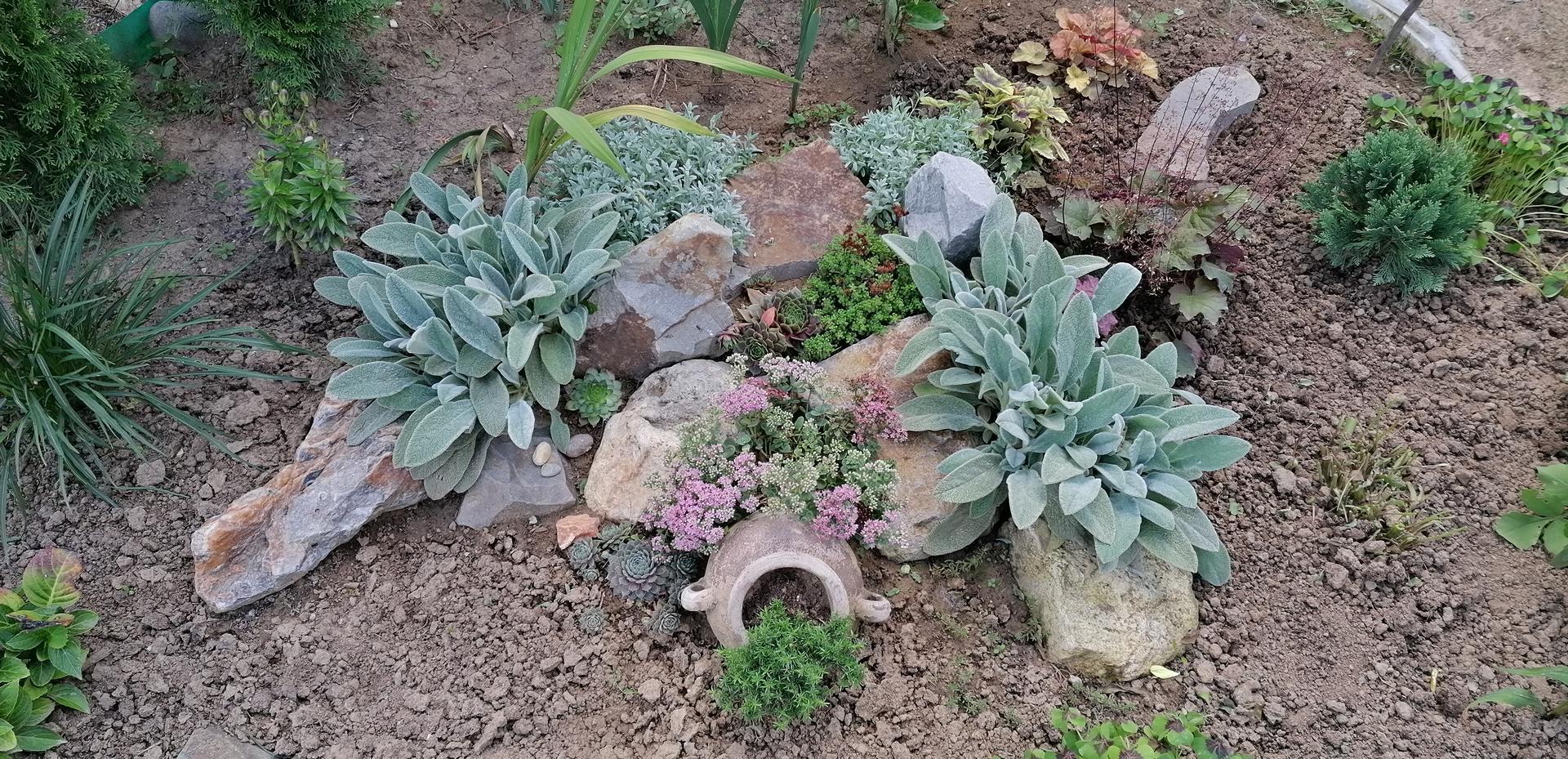 """Naše malé """"pole neorané"""" :o) záhradka 2. rok - Obrázok č. 89"""