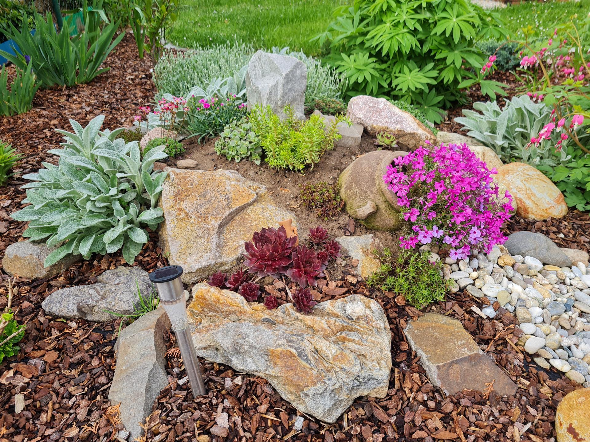 """Naše malé """"pole neorané"""" :o) záhradka 3. rok - Obrázok č. 16"""