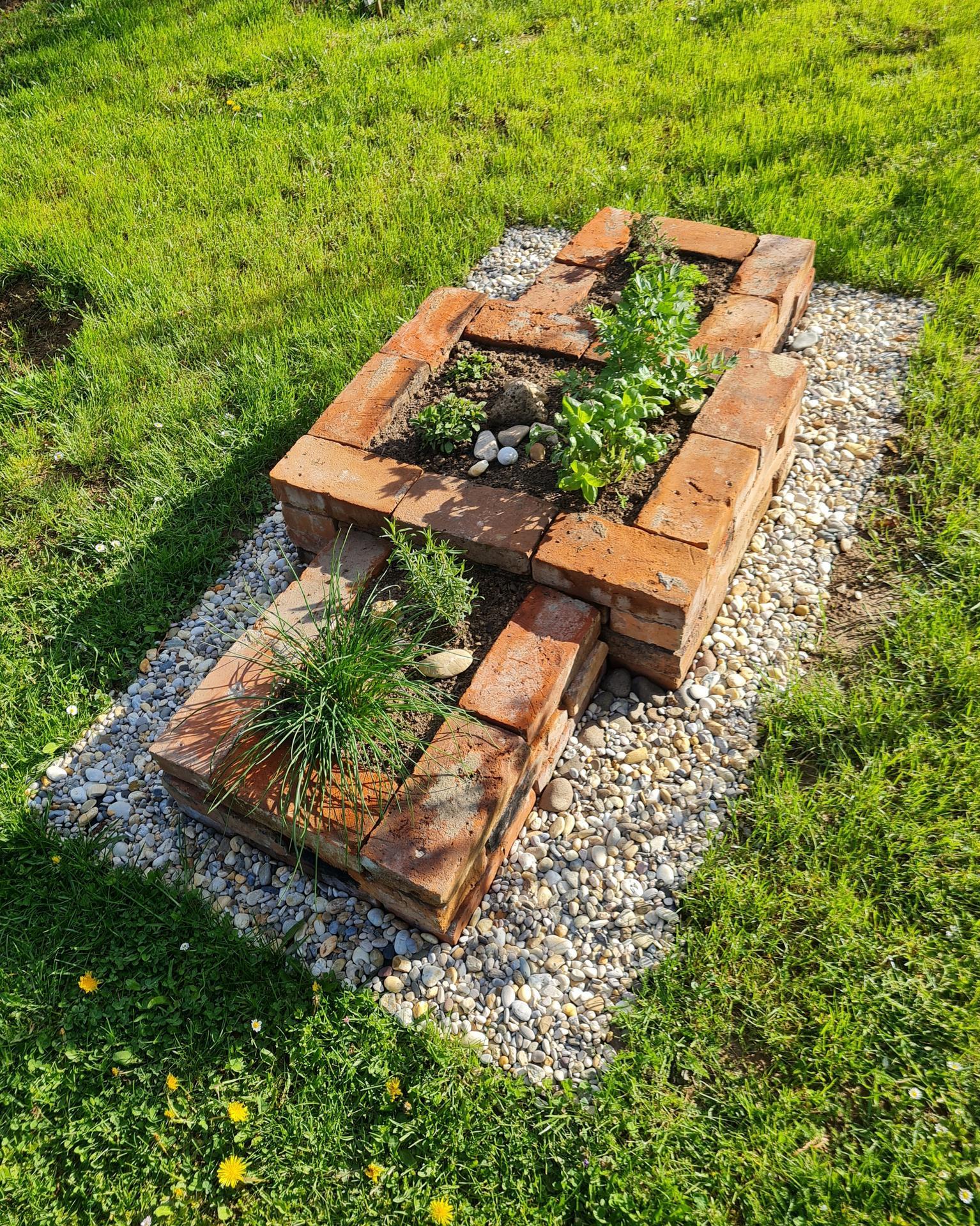 "Naše malé ""pole neorané"" :o) záhradka 3. rok - ...bylinky vždy poruke..."