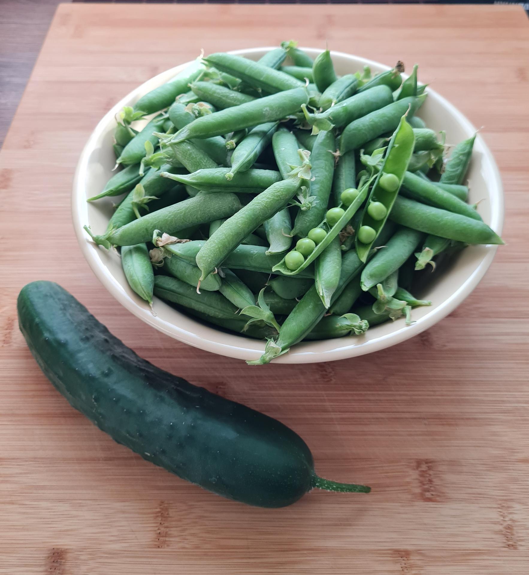 """Naše malé """"pole neorané"""" :o) záhradka 3. rok - prvá úroda hrášku"""