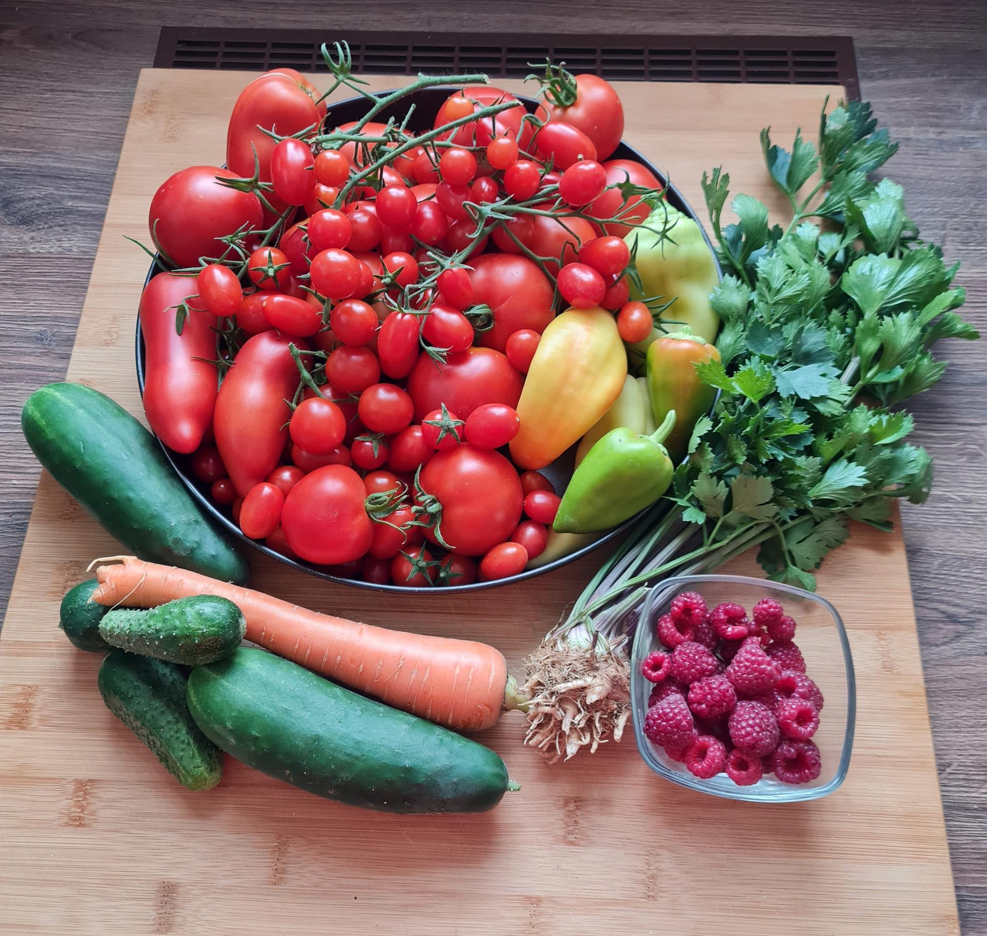 """Naše malé """"pole neorané"""" :o) záhradka 3. rok - Dnešný zber... tento rok so to prehnala s paradajkami, je ich hooodne ;-)  papriky sa moc nevydarili, tie sú malé..."""