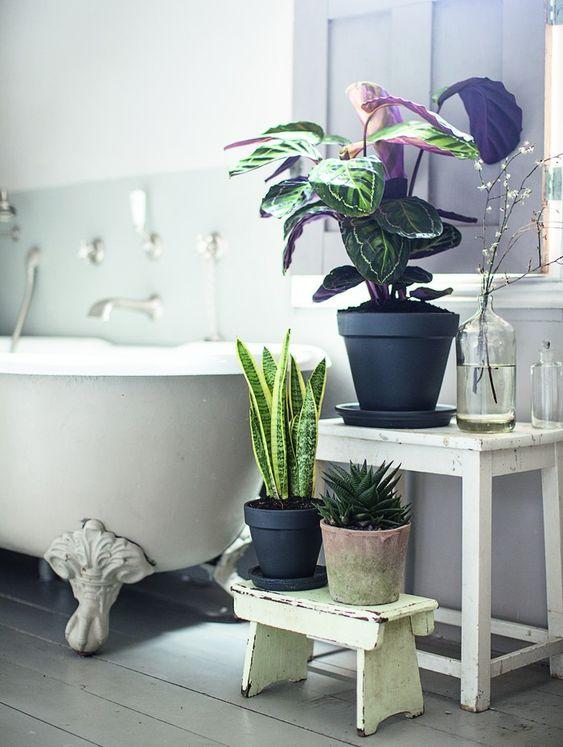 Zelená pre kúpeľňu - Obrázok č. 1