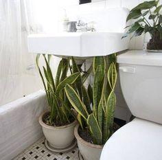Zelená pre kúpeľňu - Obrázok č. 2