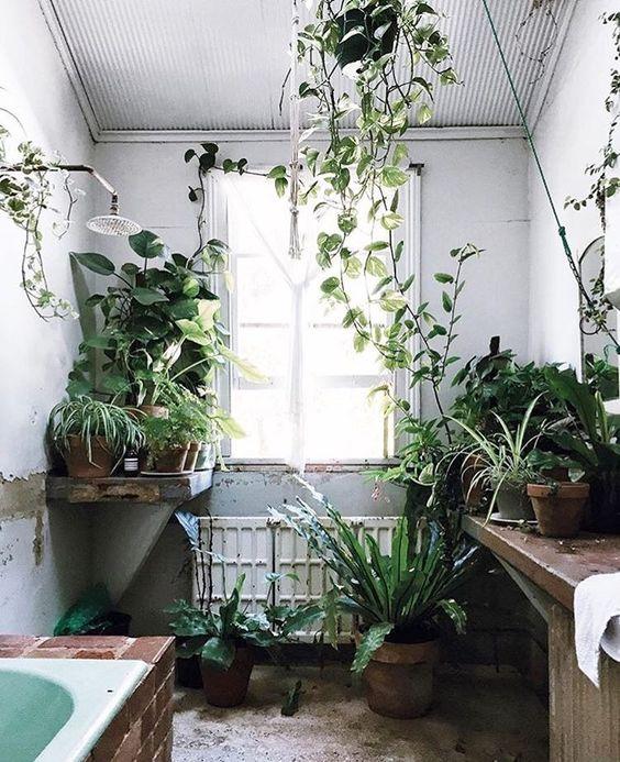 Zelená pre kúpeľňu - Obrázok č. 3