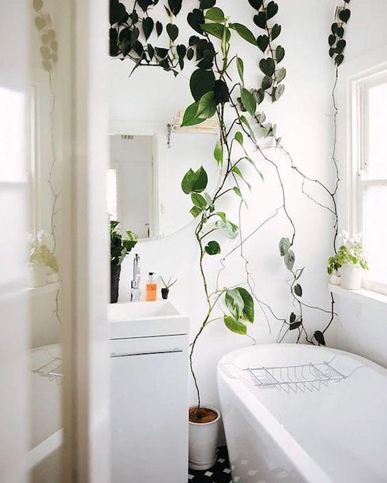Zelená pre kúpeľňu - Obrázok č. 9