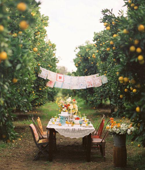 Poseďme si v záhrade - Obrázok č. 19