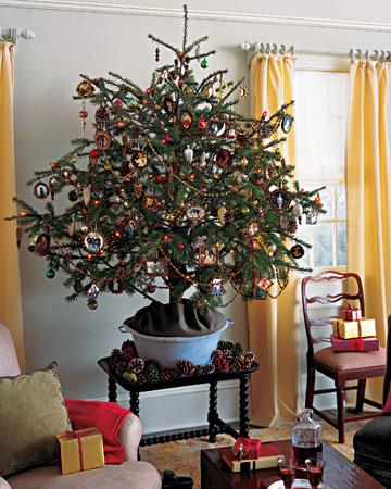 Natural christmas (aké dekorácie si môžeš vyrobiť sama:) ☃ - Vianočný stromček v kvetináči