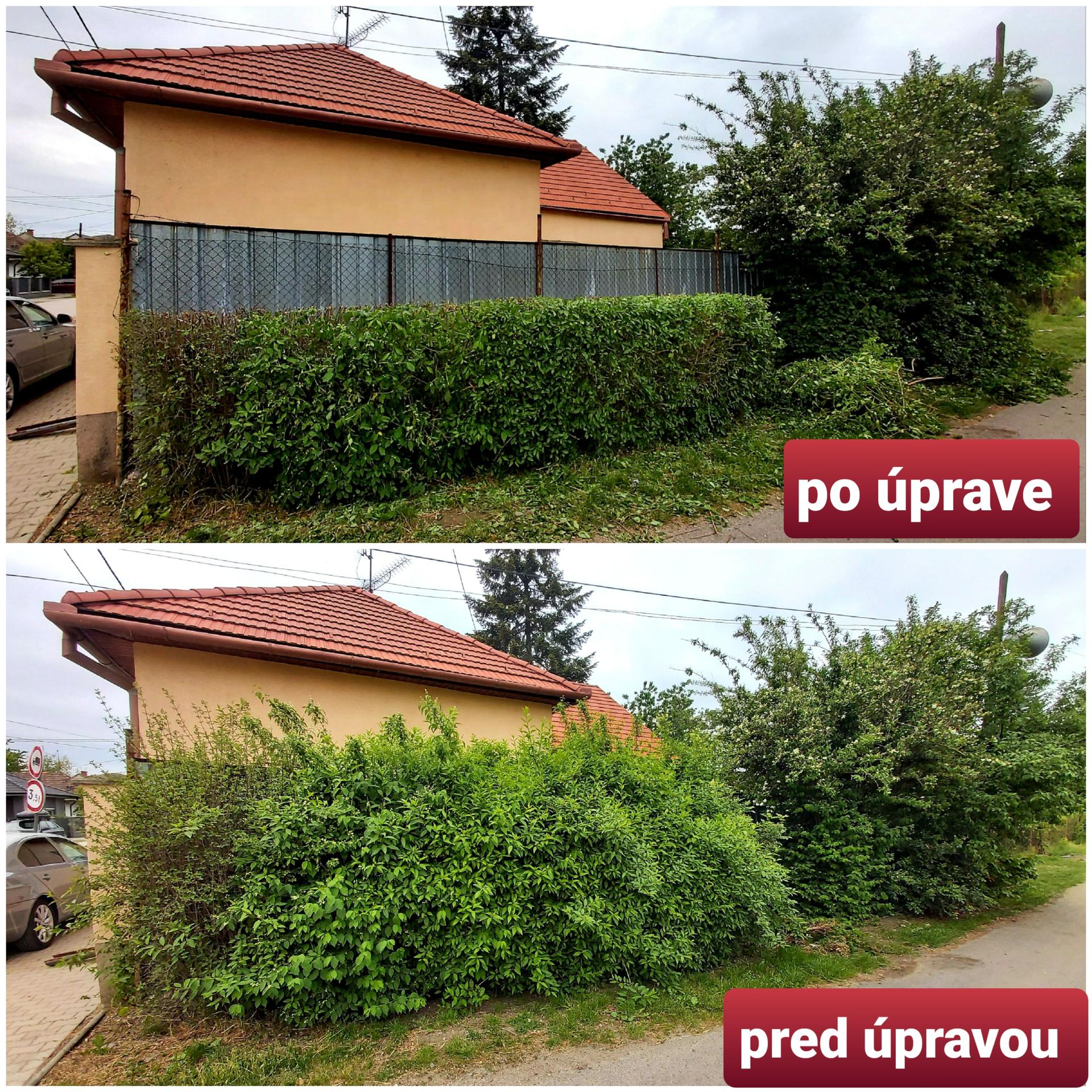 peter_kopcan - Obrázok č. 3