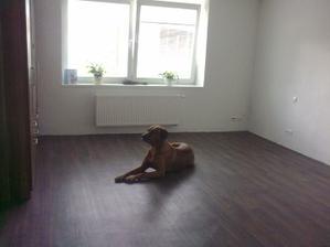 ložnice před tapetou :)