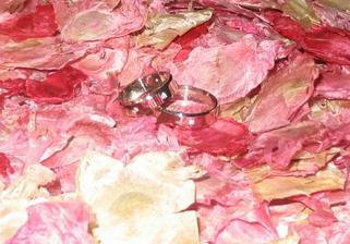 2. pohled na naše prstýnky